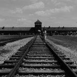 Książki i filmy Auschwitz – smutne i przerażające historie